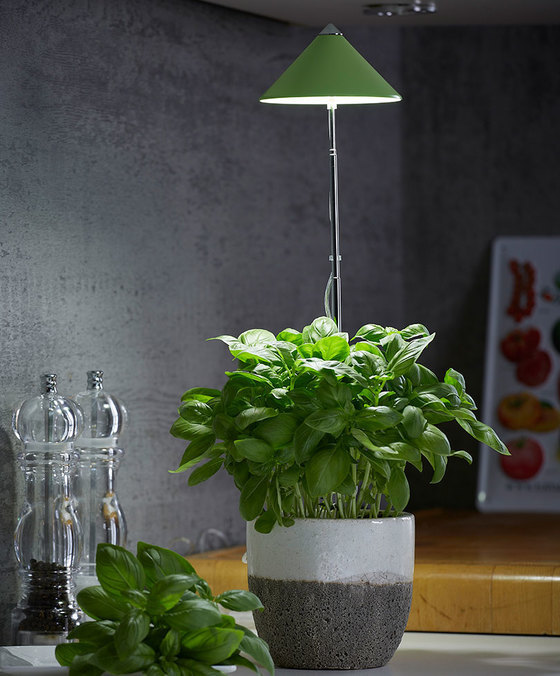 lampe led pour plantes led horticole vert 7watt pour poterie. Black Bedroom Furniture Sets. Home Design Ideas